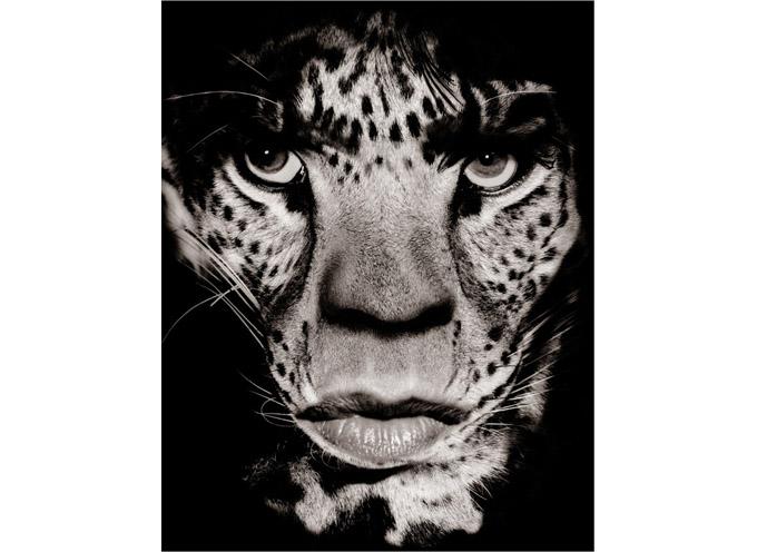 Mick Jagger som leopard fotografert av Albert Watson.