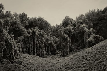 Alabama Fields © Helene Schmitz
