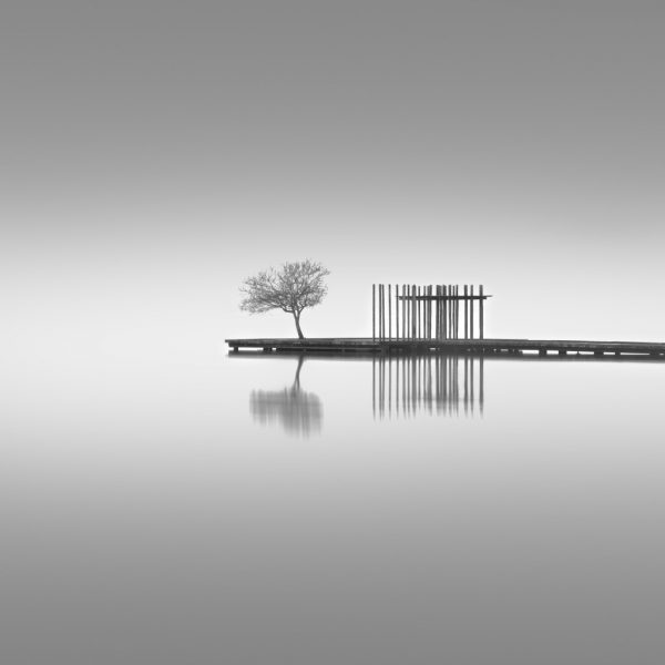 © Miguel Cabezas.