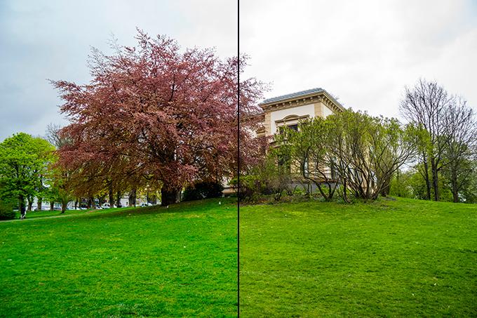 Dette bildet er tatt fra RAW-filen (t.v.) og JPEG-filen av samme opptak.
