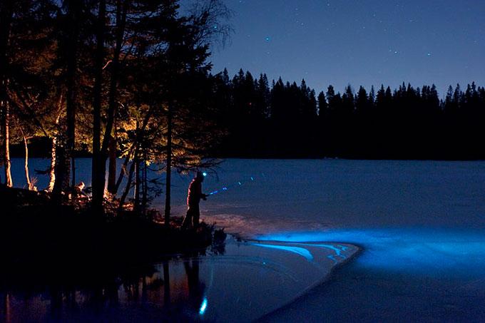 Nattfiske. Aurevann, Lillomarka. © Marius Nergård Pettersen