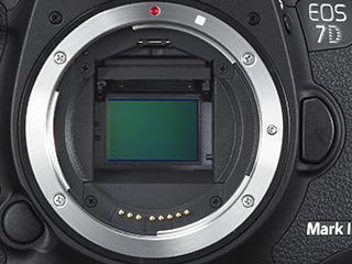 Speilhuset til EOS 7D Mk II tar plass, men EF-fatningen sikrer kompatibilitet med hele EOS-systemet, både fullformatobjektiver og EF-S-optikk.