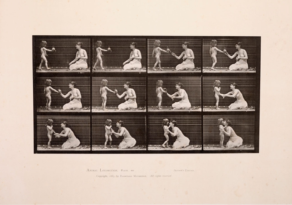 Eadweard Muybridge, Fra serien Animal Locomotion, Plate 465, 1886 – 1887. Tilhører Preus museum.