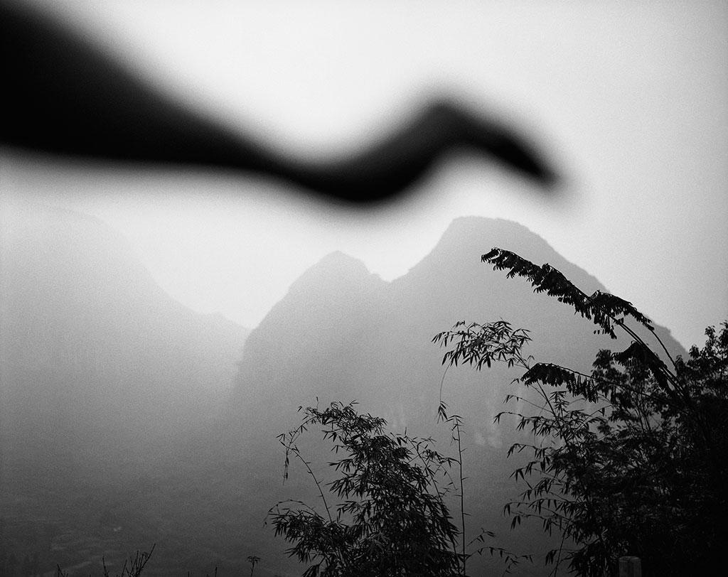 Arno Rafael Minkkinen, Bird of Lianzhou, Lianzhou, China 2006, Courtesy PUG.